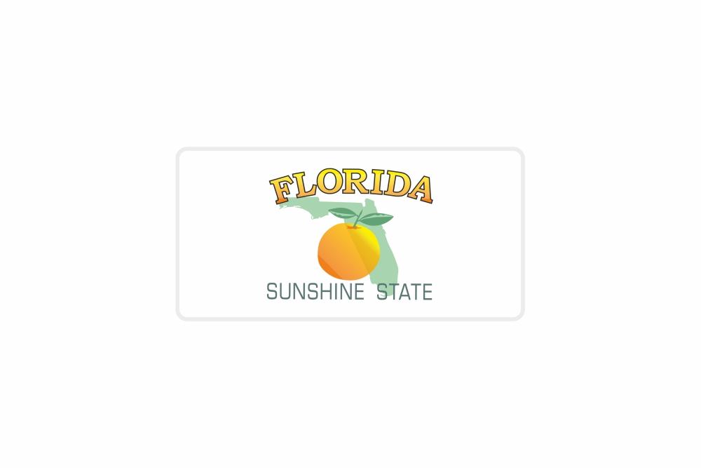 Schild Florida 300 x 150 x 1 mm